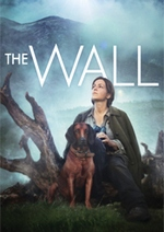 The Wall DVD Cover