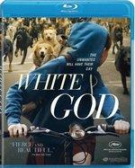 photo for white-god