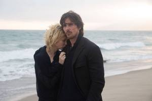 photo for Knight of Cups