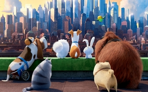 photo for The Secret Life of Pets