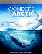 photo for Wonders of the Arctic