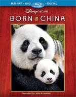 photo for Born in China
