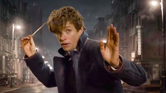 photo for Fantastic Beasts and Where to Find Them
