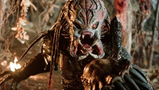 photo for The Predator