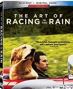 photo for The Art Of Racing In The Rain