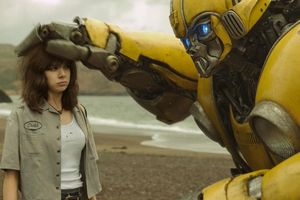 photo for Bumblebee